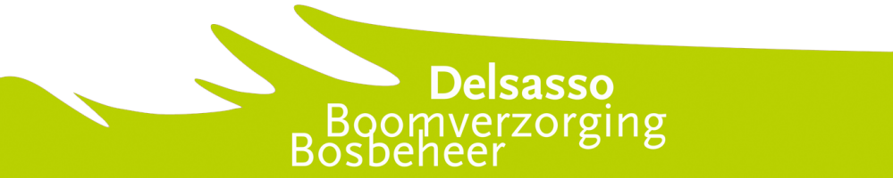 Delsasso